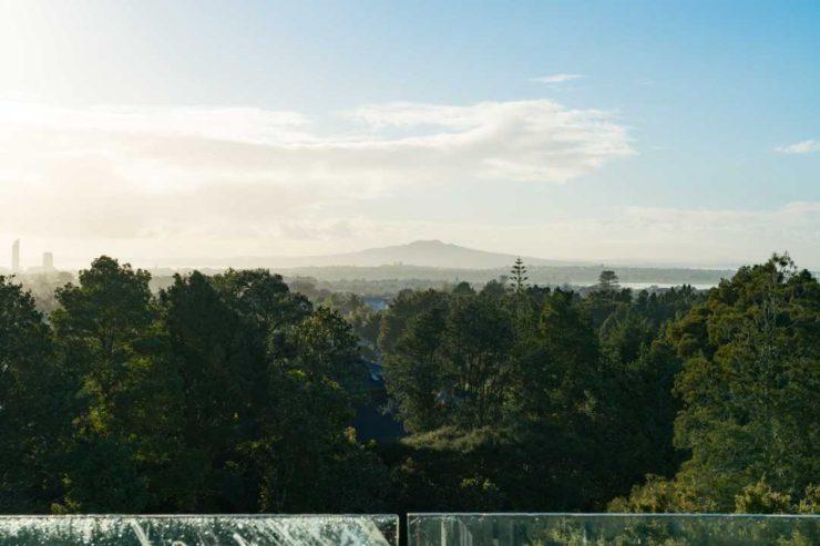 Robyn Roper Rangitoto View